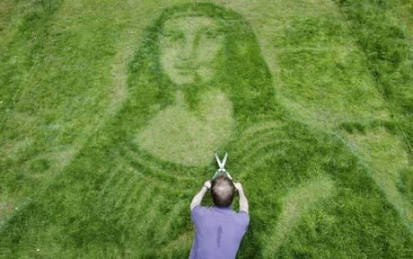 """""""Mona Lisa mown into suburban garden lawn. An art-obsessed gardener has mown the Mona Lisa - complete with mysterious smile - into her lawn.""""  Click through for the story! [Laughing hysterically...just saw this pinned elsewhere with the caption """"Mown-a Lisa""""!!!]"""