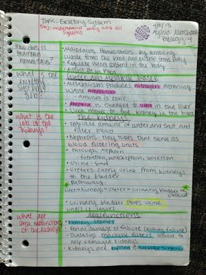 cornell notes for math examples