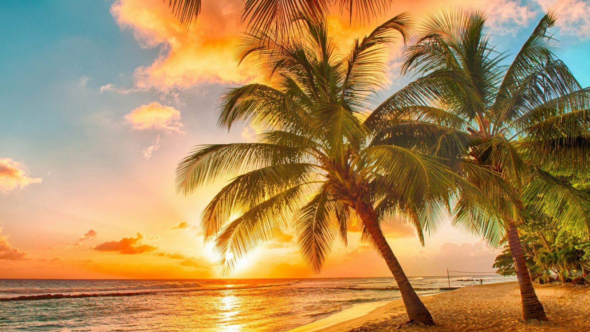 Mostnature tropical sunset palms paradise beach sea hd mostnature tropical sunset palms paradise beach sea hd wallpapers 1080p voltagebd Choice Image