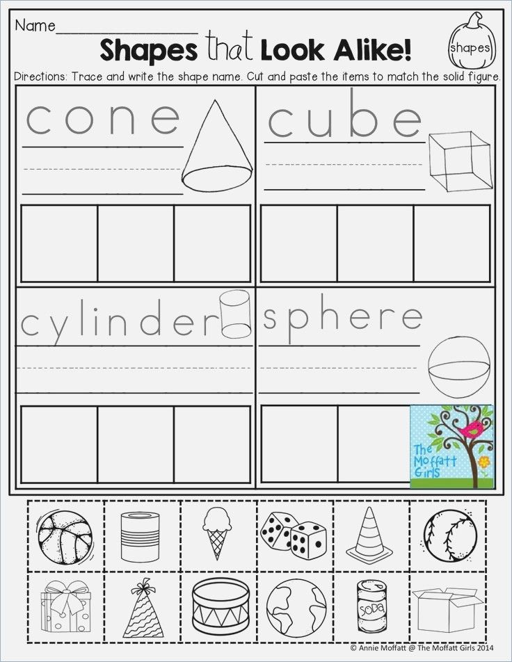 Sort 2d And 3d Shapes Worksheet Education Com Prek