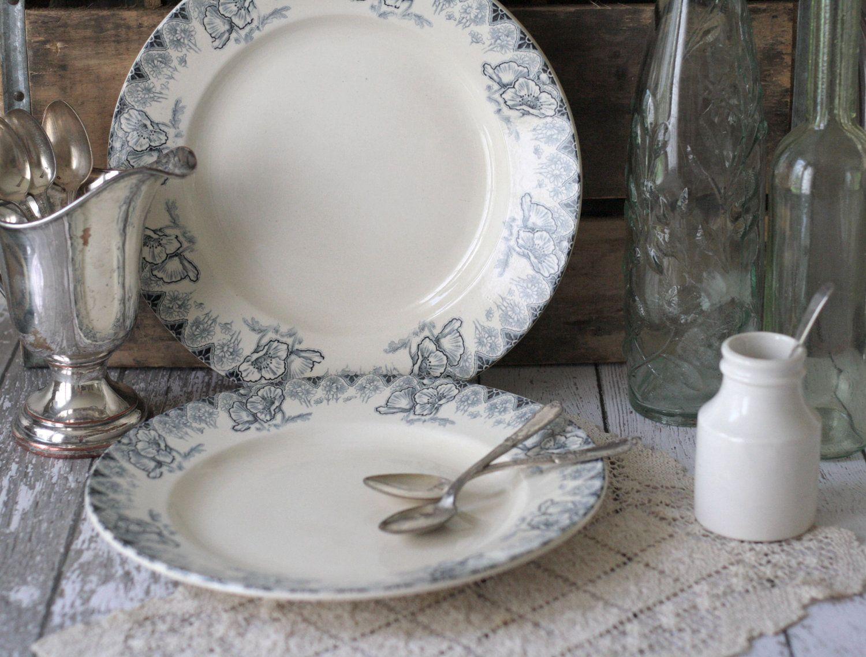 Antique French Dinner Plates Set of 2 Terre de fer #ironstone & Antique French Dinner Plates Set of 2 Terre de fer (Ironstone) Blue ...