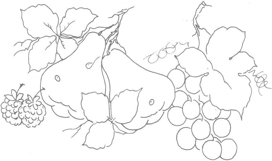 Panos De Prato Com Frutas Com Imagens Riscos Para Pintura