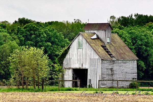 Old White Barn Bartholomew County Indiana Old Barns