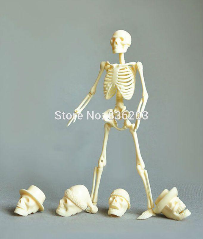 Menschlichen anatomische körper 20 cm montage skeleton schädel ...