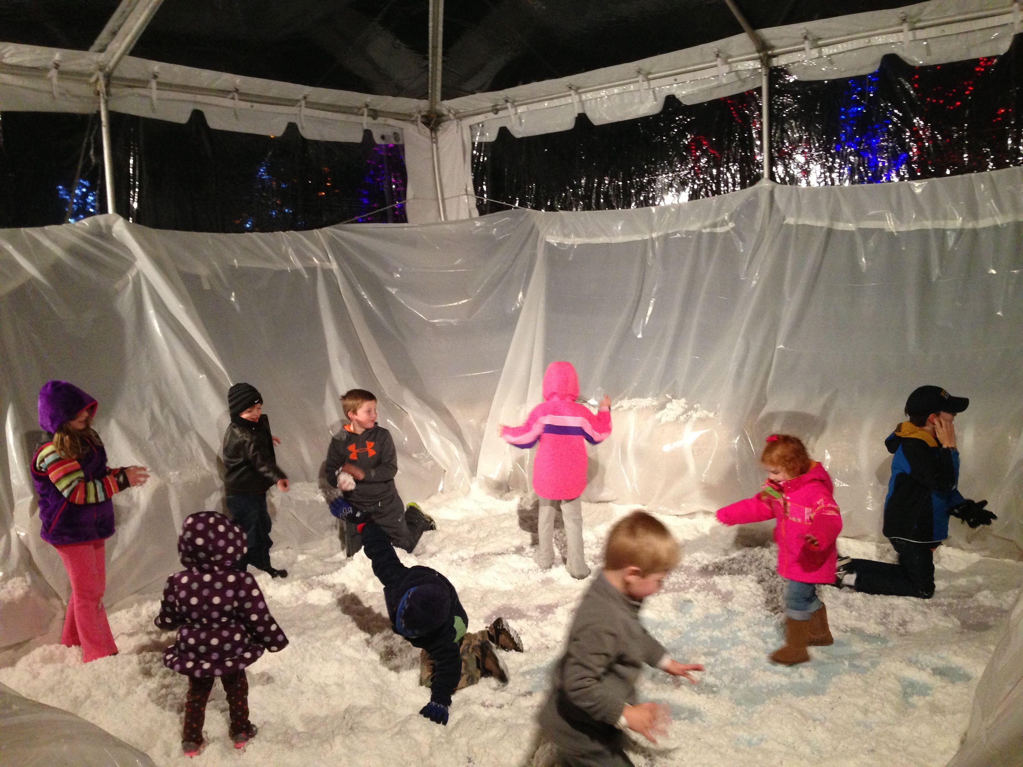 Snowy Nights at My Big Backyard | Snowy, Big backyard ...