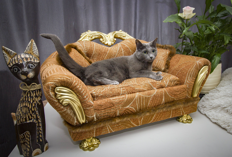 Pet Bed Dog Sofa Mini