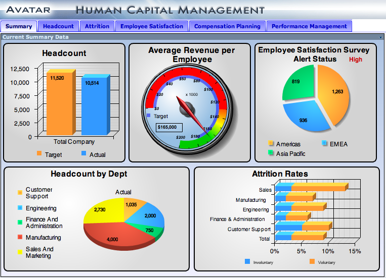 Management  Executive Dashboard Designed For Human Capital
