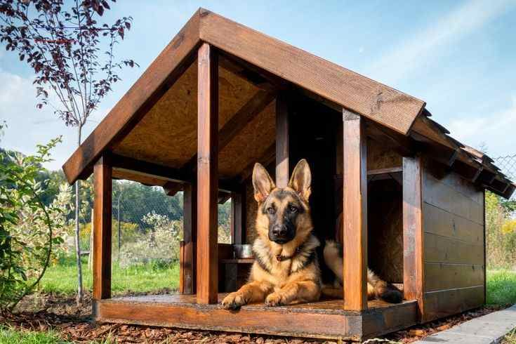 Diy Dog House Plans That Are Free And Super Cool How To Build