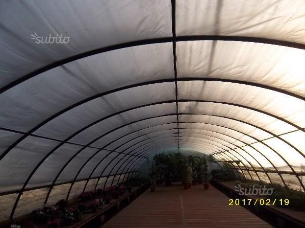 tunnel-serra-ad-arco-per-vivaio