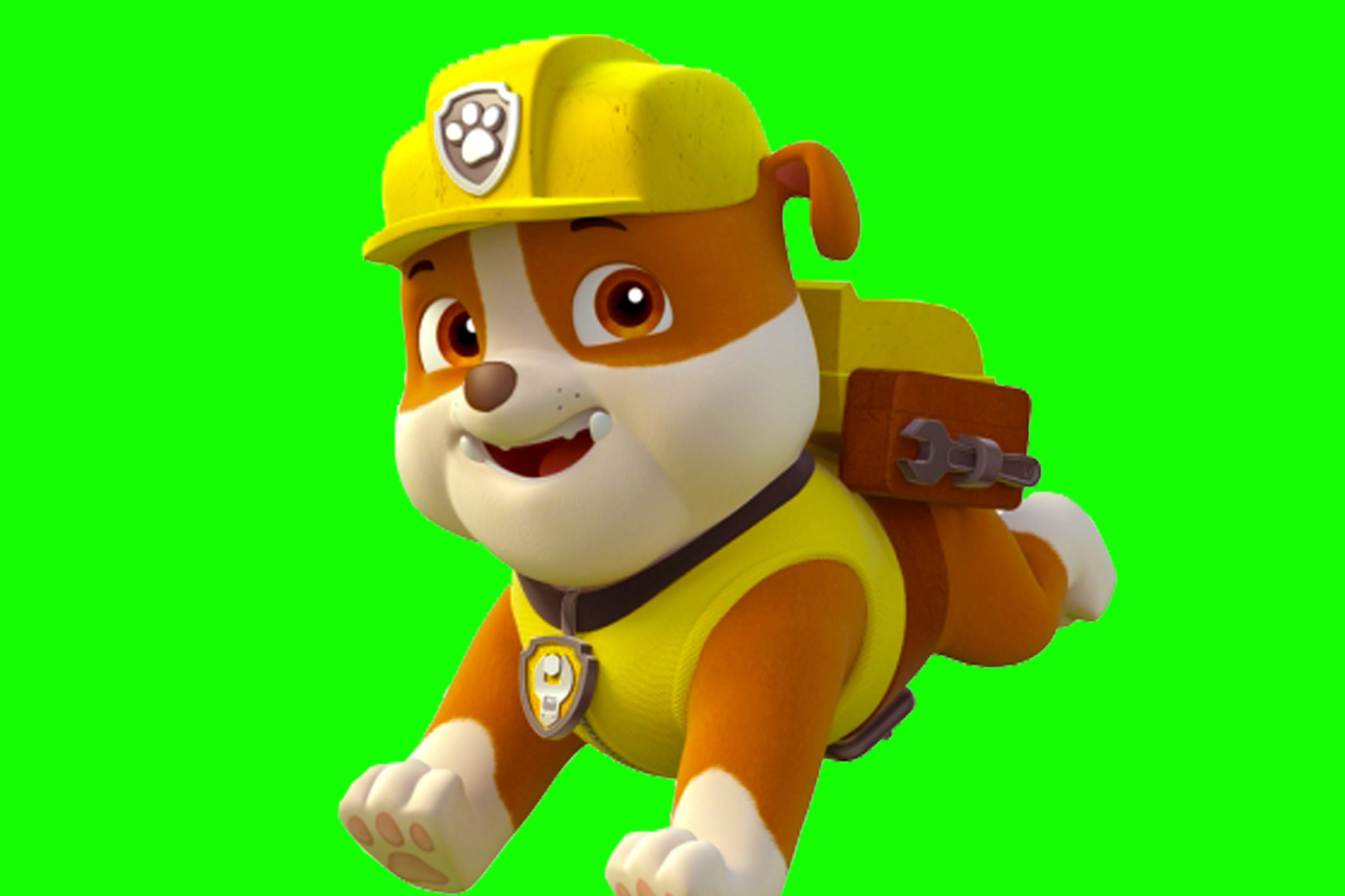 Making Rubble From Paw Patrol Paw Patrol Birthday Paw Patrol Characters Rubble Paw Patrol