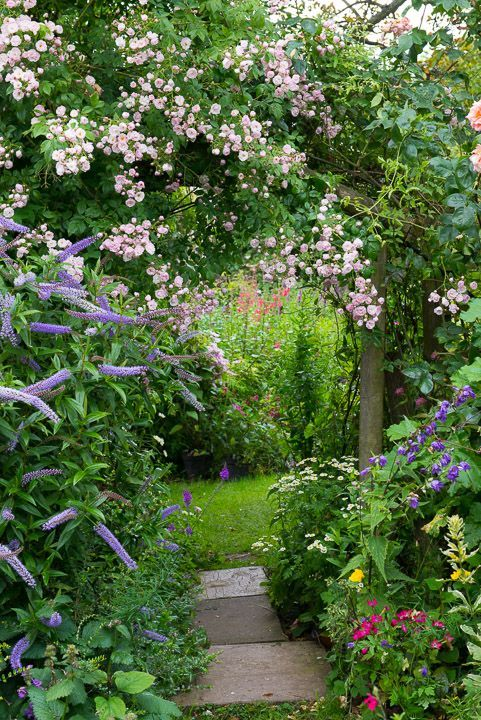 Create winding pathways and massed plantings to add interest to your garden. A straight, bare garden is boring ! - #add #bare #boring #Create #Garden #interest #massed #pathways #plantings #secrets #Straight #winding #cottagegardens