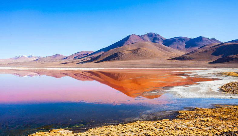 La Laguna Colorada e la riserva Nazionale di fauna andina