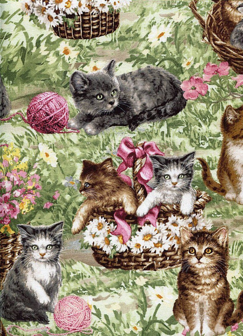 Just Arrived Catfabric Cottonfabric Kittycat Kitten Kittenfabric Fabric Sewing Crafting Cat Fabric Art Quilts Printing On Fabric