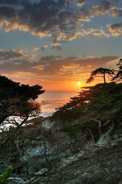 Sunset Lone Cypress Tree 17 Mile Drive California Scenic Sunset Beautiful Places
