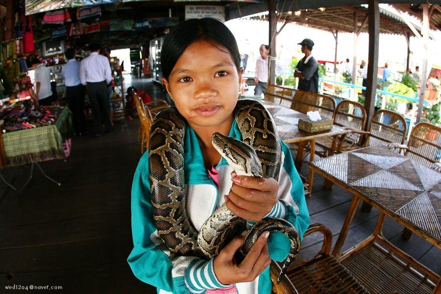 캄보디아14> 그들만의 세상 톤레샵호수2 : 네이버 블로그