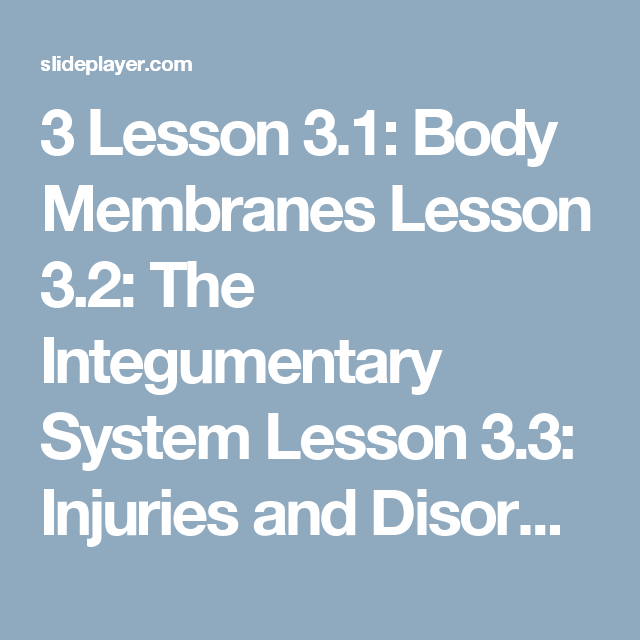 3 Lesson 31 Body Membranes Lesson 32 The Integumentary System
