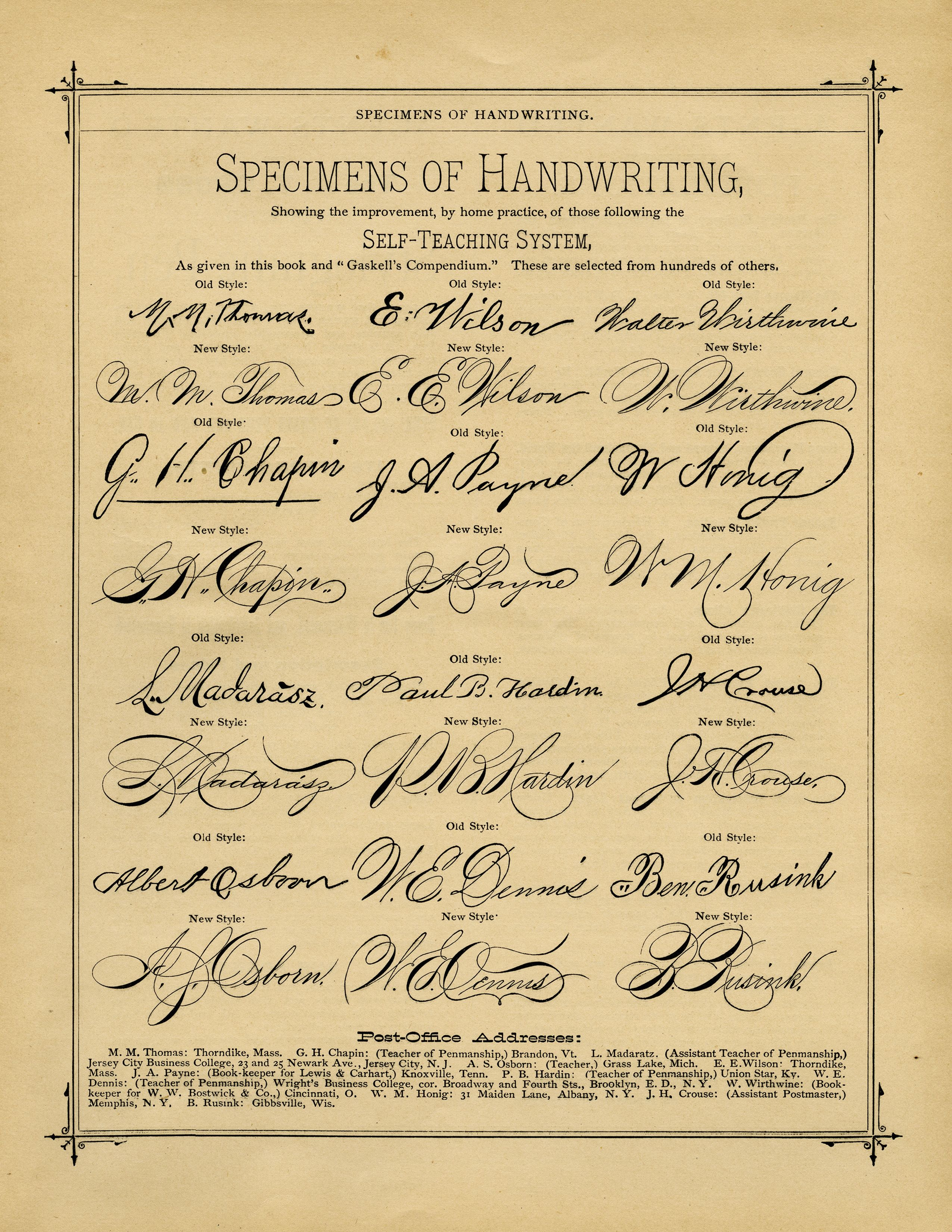Old Book Page Penmanship Examples Vintage Handwriting