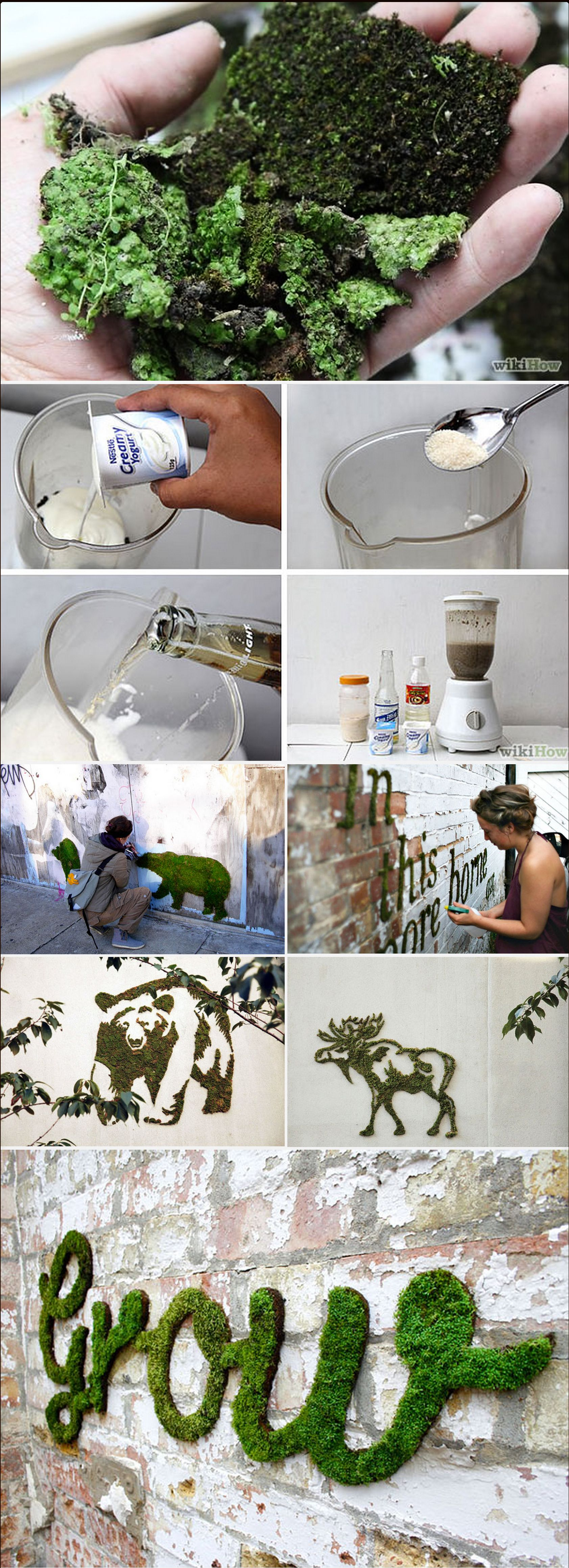 Moss graffiti curated pinterest jardiner a musgo and suculentas jardin - Jardin verticale ...