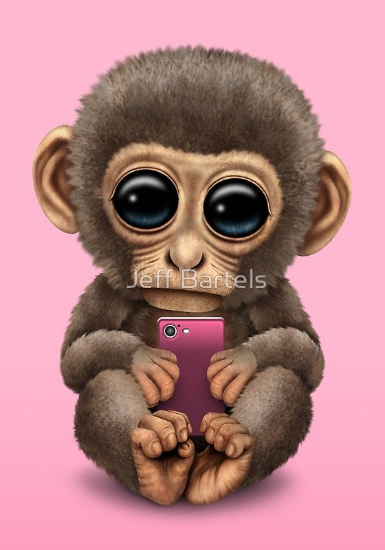 Cheetah Print Iphone Wallpaper Cute Baby Monkey Holding A Pink Cell Phone Jeff Bartels