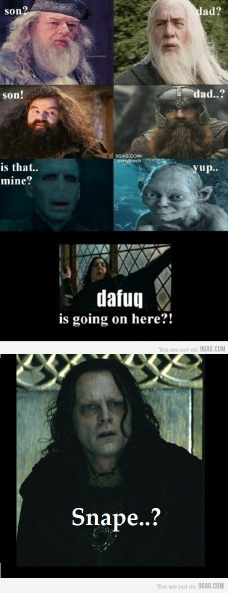 Crossover Lord Of The Rings And Harry Potter Xd Harry Potter Memes Hilarious Harry Potter Puns Harry Potter Memes
