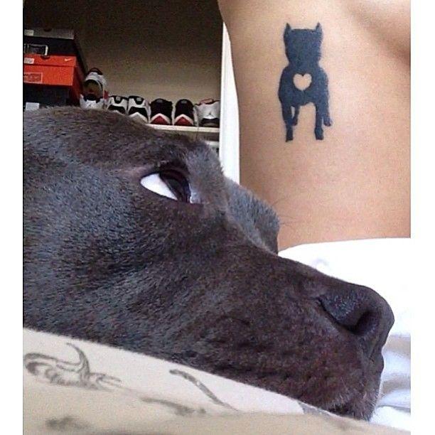 Pitbulls And Tattoos Instagram