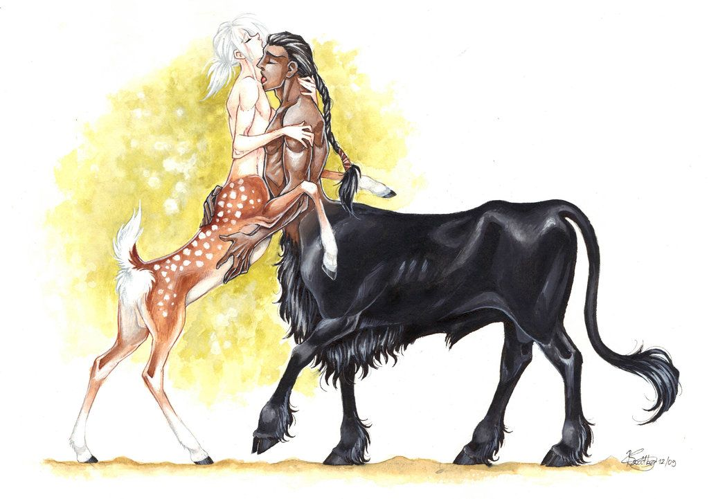 Centaurs In Love II By ConnyChiwa Slash Pics Pinterest