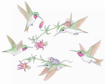 Honeysuckle and Hummingbirds, © HouseMouse Designs