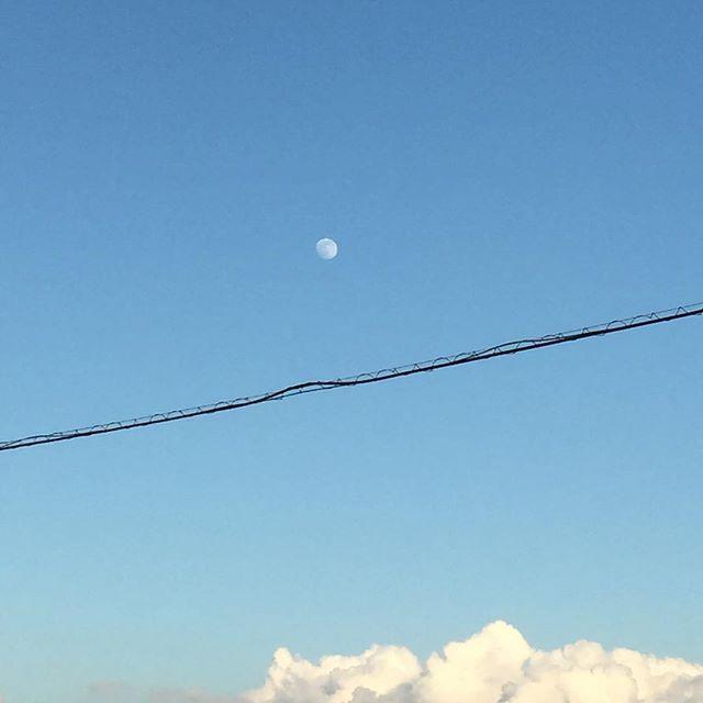 いま月 (by tsu1972)