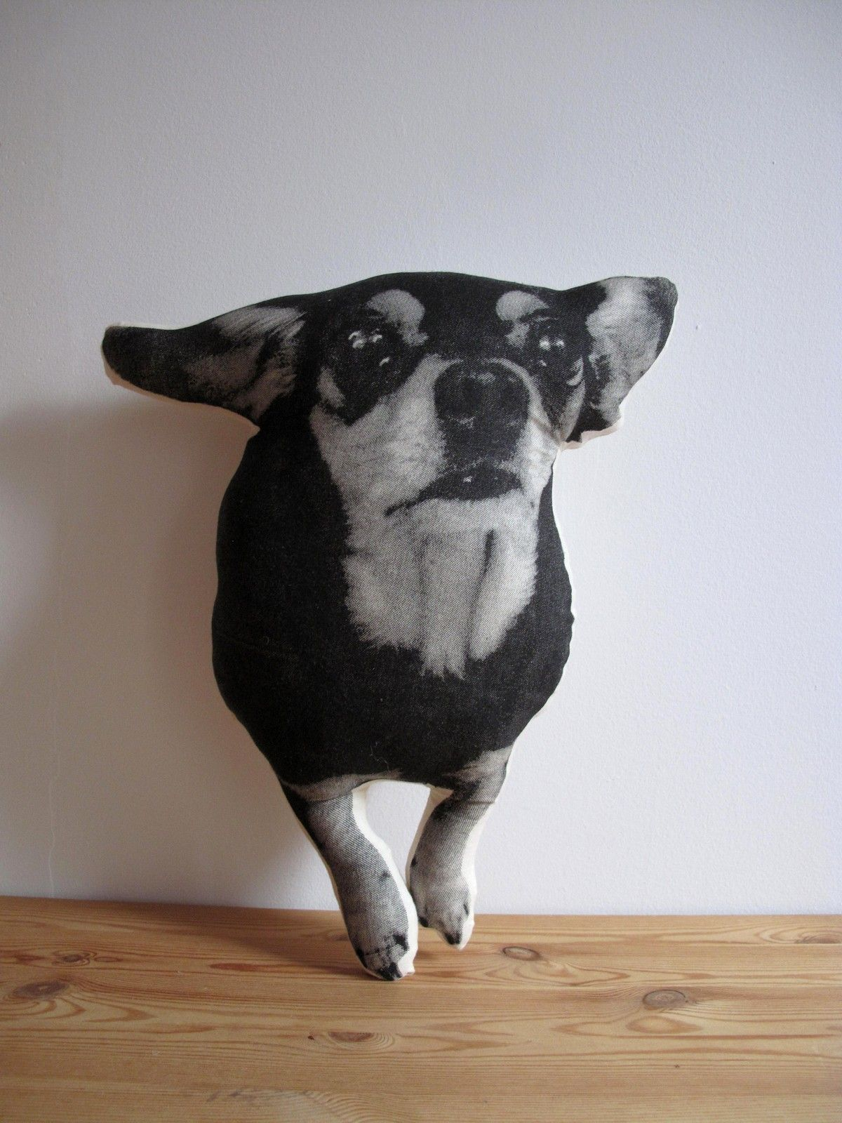 Custom Pillows Cloning Your Favorite Pets by Shannon