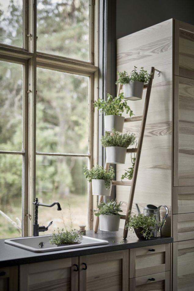 Ikea Torhamn Kitchen Cabinet Door Fronts Herb Garden In Kitchen Ikea Plants Herbs Indoors