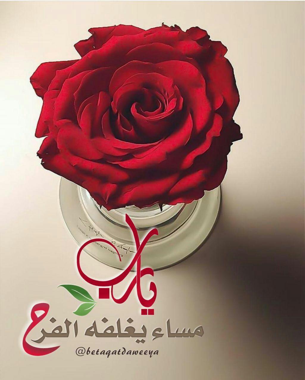 Pin By Ali علي On مساء الخير Good Evening Wishes Good Evening Islamic Art Calligraphy