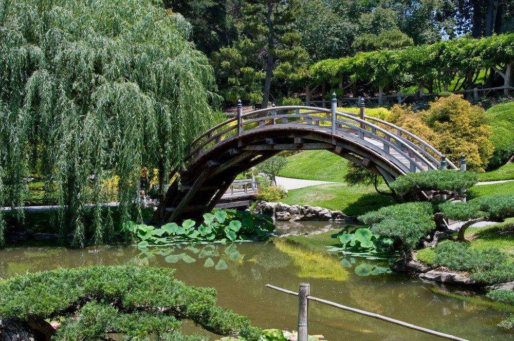 The Mildred E Mathias Botanical Garden With Images California