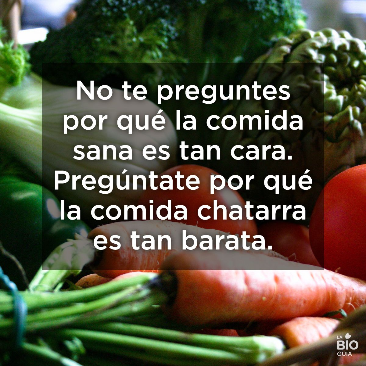 Frases Quotes Conciencia Comida Frases De Nutrición