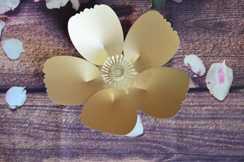 Pin On Paper Flowers Backdrop Cricut Paper Flowers