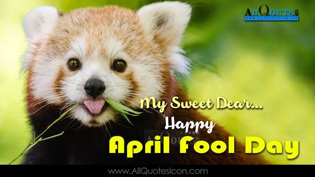 English April Fool Day Funny Quotes Whatsapp Dp Pictures Facebook
