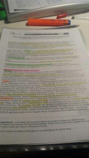 Study Por Noelle Estudio