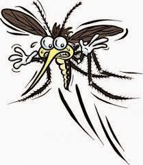 remedes de grands meres trucs pour se debarrasser des moustiques pandemic research remede. Black Bedroom Furniture Sets. Home Design Ideas