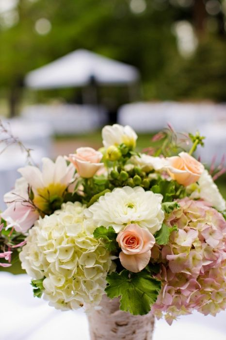 hydrangea and rose centerpiece...