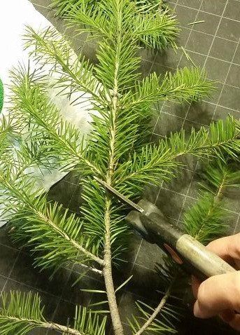 Make A Faux Diy Christmas Tree With Real Branches Diy Christmas Tree Ornaments Diy Christmas Tree Faux Christmas Trees