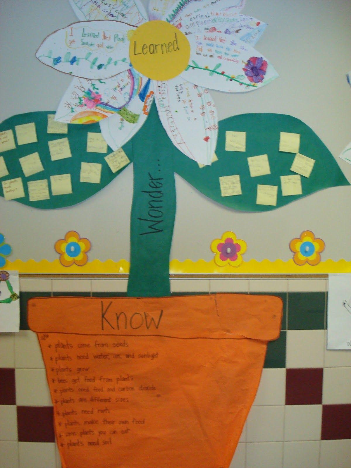 2nd Grade Science Plants