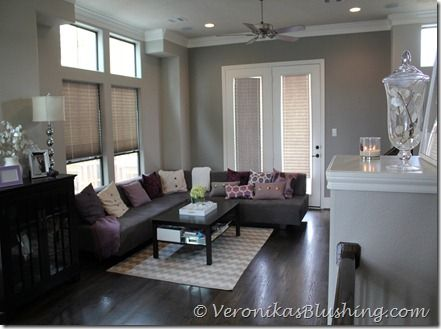 Dark Brown And Light Grey Living Room