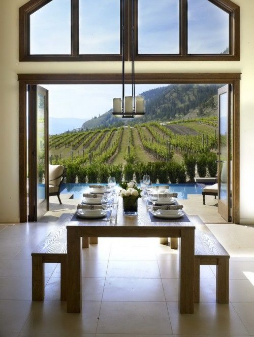 vineyard for the backyard. I could handle that.