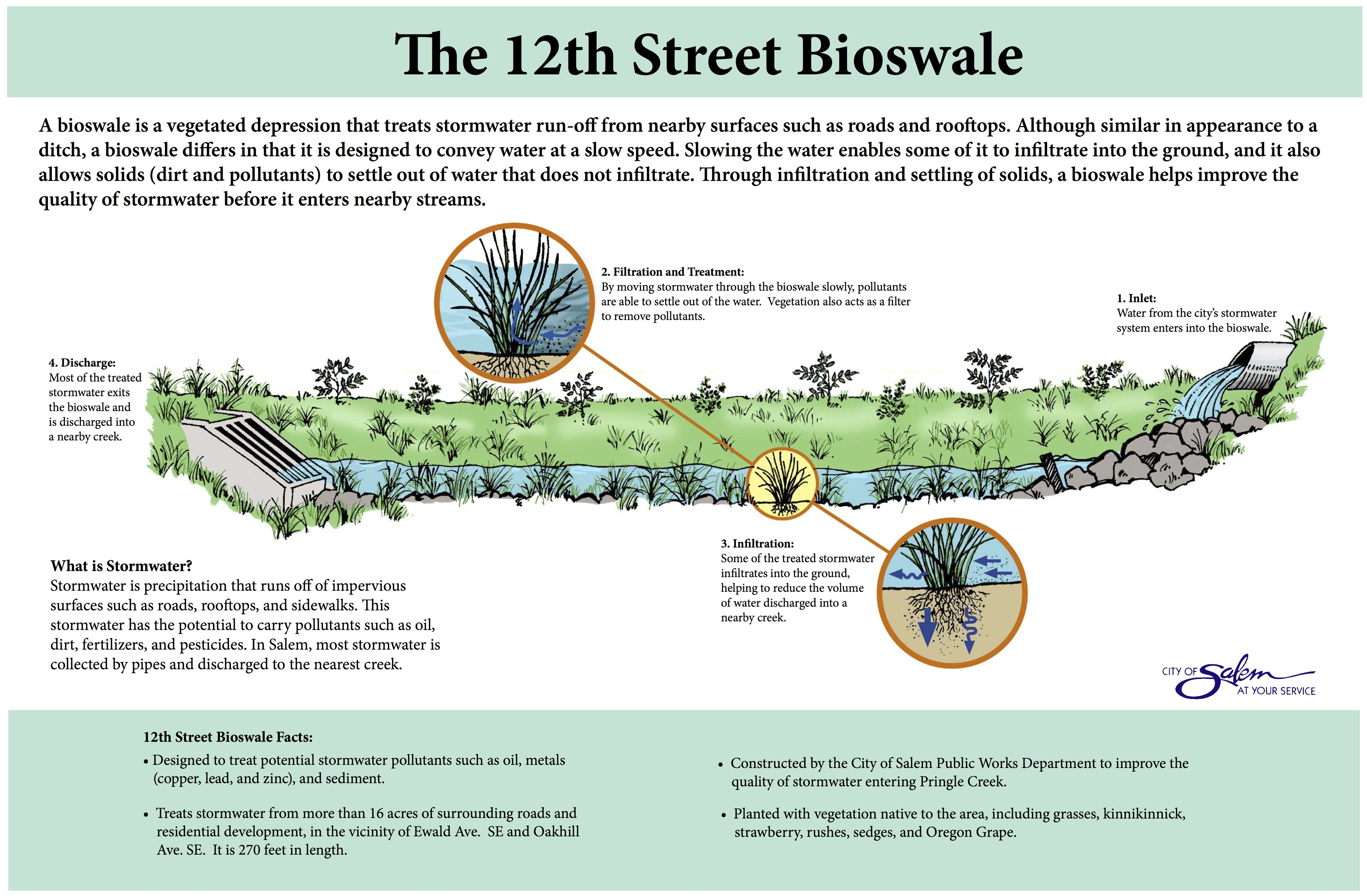 Good Bioswale Illustration Stormwater Management Stormwater