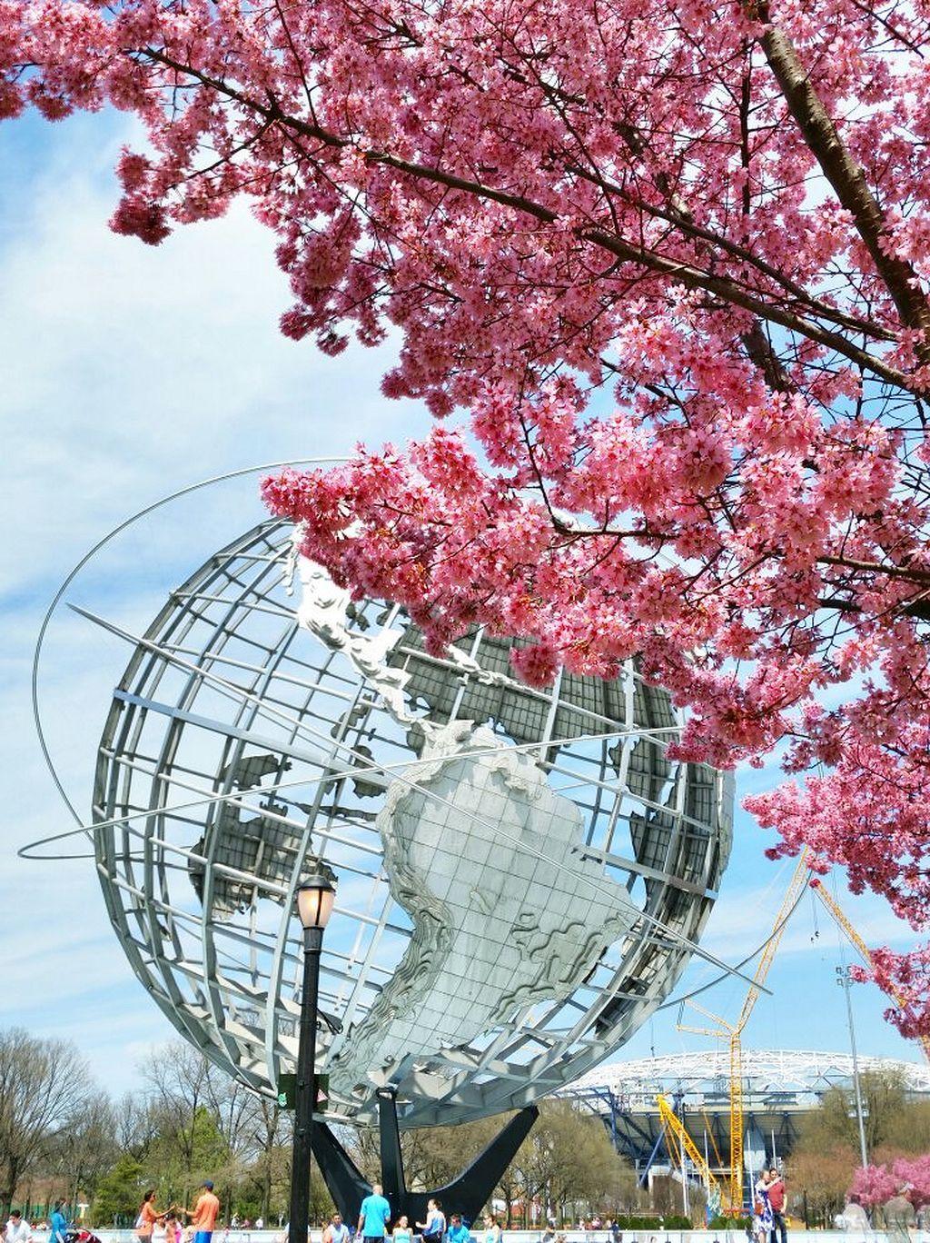Nice 20 Beautiful Cherry Blossom Garden Https Gardenmagz Com 20 Beautiful Cherry Blossom Garden New York City Photos The Bronx New York Queens Nyc