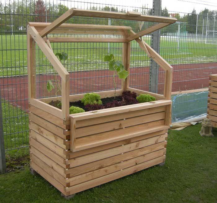 hochbeet mit treibhaus abnehmbar mit gepflanzten gurken und salat garten pinterest patios