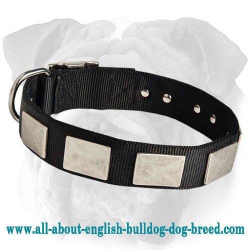 Comfortable Plated #Nylon #English #Bulldog #Collar $24.90  #englisbulldog #dog #accessories