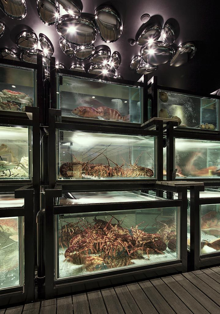 Modern Chinese Seafood Cuisine