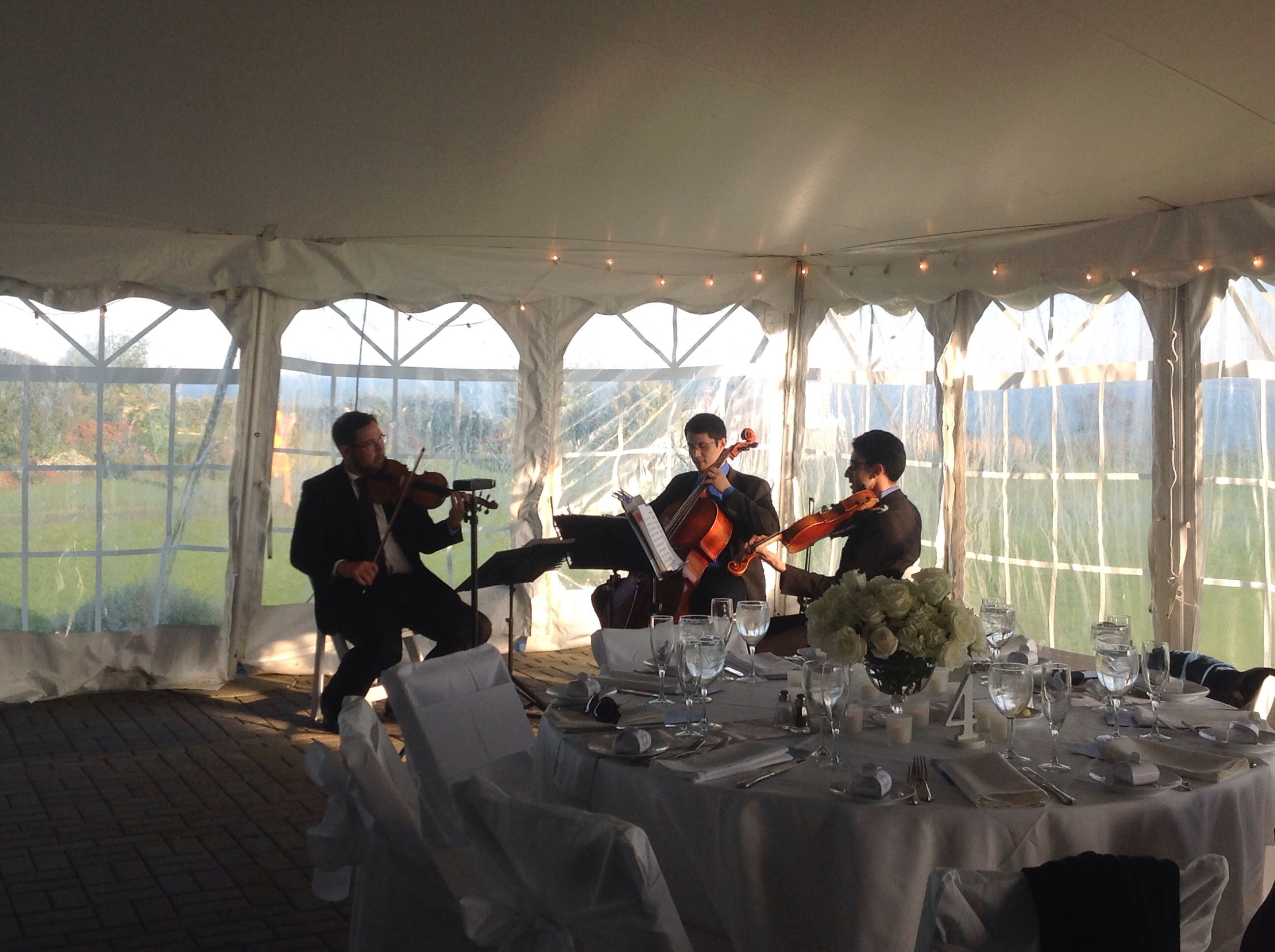 Acoustic music for cocktail hour Acoustic music, Wedding