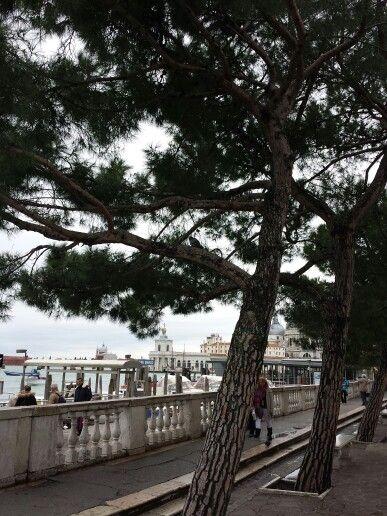 Venezia Venice Punta della Dogana