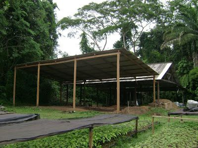 Zoobotanical Park at Federal University of Acre - Rio Branco, Acre
